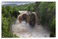 High Force Waterfall in Flood Upper Teesdale , Acrylic Print