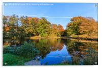 Reflected Colours of Autumn, Acrylic Print
