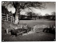 countryside view , Acrylic Print