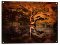 Autumnal Colours, Acrylic Print