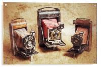 Old Cameras, Acrylic Print