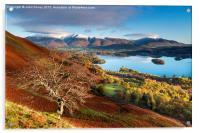 Autumnal Lakeland, Cumbria, England. , Acrylic Print
