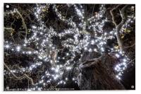 Christmas Lights , Acrylic Print