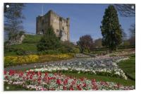 Guildford Castle Keep & Grounds ,Surrey England , Acrylic Print