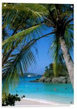 Trunk Bay, St John , US Virgin Islands, Caribbean., Acrylic Print