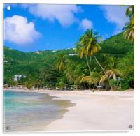 Cane Garden Bay ,Tortola BVI , Caribbean , Acrylic Print