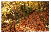 Autumn Walk, Acrylic Print