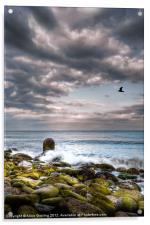 Stormy Beach, Acrylic Print