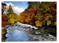 Autumn in the glen, Acrylic Print