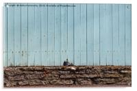 Crack In The Fence, Acrylic Print