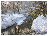 Snow dream, Acrylic Print