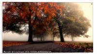 Foggy Autumn Trees, Acrylic Print