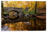 Autumn Bridge Scotland, Acrylic Print