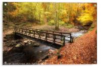 Alyth Autumn Wonderland, Acrylic Print
