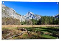 Beauty of Yosemite, Acrylic Print