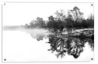 Dramatic trees, Acrylic Print