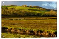 Across the river Devoran, Acrylic Print