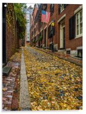 The Fall on Acorn Street ,Boston, Acrylic Print