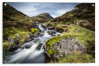 Outflow from Loch Skeen on Tail Burn, Acrylic Print