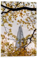Looking for the Shard, Acrylic Print