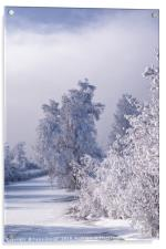 Beneath the Frosty Shroud, Acrylic Print