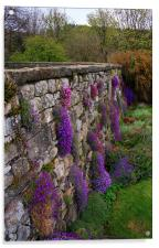Wall of Flowers, Acrylic Print