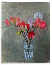 Sweet Peas, Acrylic Print
