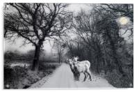 A winters' tale, Acrylic Print