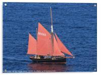 Brixham Trawler Pilgrim , Acrylic Print