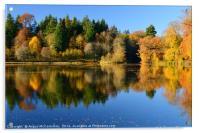 Penicuik Pond autumn colours 2016, Acrylic Print