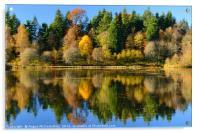 Autumn colours on Penicuik Pond 2016, Acrylic Print