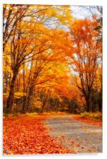 Autumn in Quebec, Acrylic Print