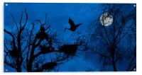 Heron Landing on Nest at Night, Acrylic Print