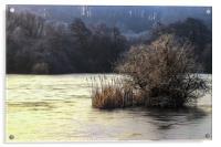 Winter wonderland 1, Acrylic Print