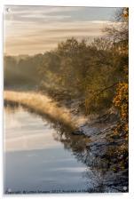 Autumn Light, Acrylic Print