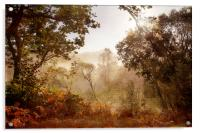 Autumn Mornings, Acrylic Print