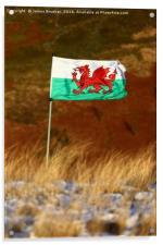 Welsh Flag and Winter Hillside, Acrylic Print