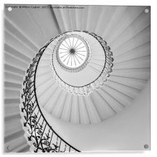 The Tulip Spiral Stairs - B&W, Acrylic Print