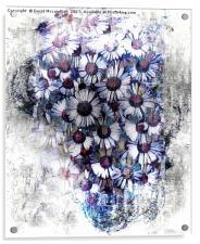 Jug with Daisies, Acrylic Print