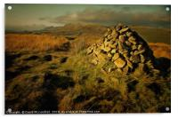 Ardinning Loch Walk, Acrylic Print