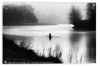 Early Morning Rowers on River Dart, Acrylic Print