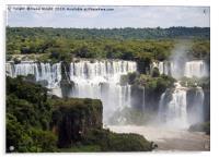 The waterfalls of Iguazu Falls, Acrylic Print