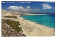 Playa de Sotavento, Fuerteventura, Acrylic Print