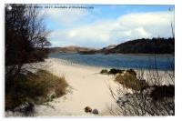 White sands of Morar near Arisaig. West Highlands , Acrylic Print