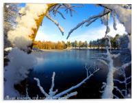 Frozen Lake at winter time, Acrylic Print