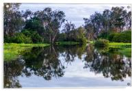 Flooded wetlands during the wet season, Acrylic Print