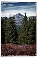 Glenshant Hill and Goatfell, Isle of Arran , Acrylic Print