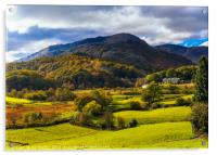 Autumn colours in Little Langdale, Acrylic Print