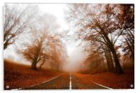 Road in fog, Acrylic Print