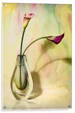 Floral Harmony , Acrylic Print